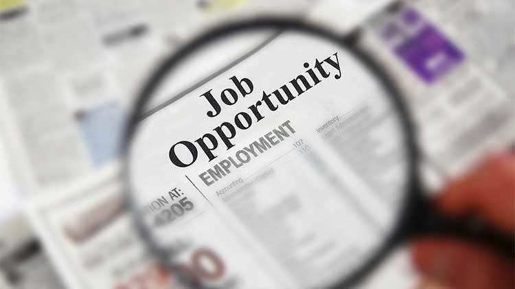FC-Job-Opportunities.jpg