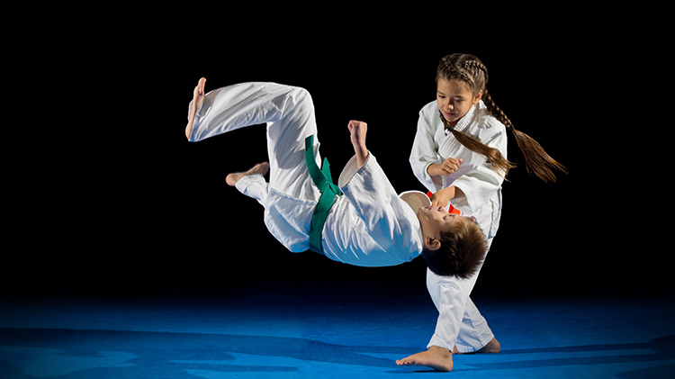 Martial Arts: Dragon Class (Age: 8 to 14)